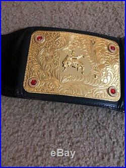 2003 Wwf Wcw Wwe Raw World Heavyweight Championship Title Belt Adult Replica