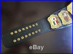 PREMIER WORLD WRESTLING CHAMPION TITLE BELT Heavyweight Wildcat Championship