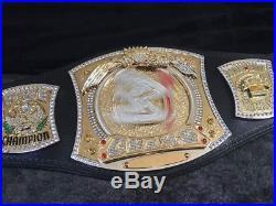 Rare Master Series WWE Championship Adult Replica Belt (Spinner) WWE WWF WCW NWO