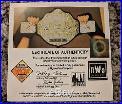 Ric Flair WCW NWA WWE Big GOLD Belt Heavyweight Championship Title Adult Belt