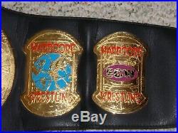 TAZ VERSION ECW WORLD CHAMPIONSHIP METAL ADULT REPLICA WRESTLING TITLE BELT wwe