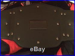 WWE 2013 Big Logo WWE Championship Replica belt! Metal Plates! Adult Size