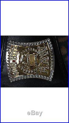 Wwe Spinner Championship Belt Signed CM Punk, Jeff Hardy Master Series Swarovski