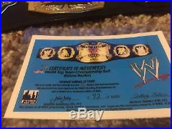 WWE/WWF Raw Tag team deluxe Championship Adult replica belt