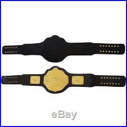 WWE World Heavyweight Championship Commemorative Title Belt Metal Plates