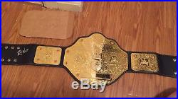 Wcw Wwe Gfw Roh Wwe World Championship Title Belt Signed By Kevin Nash