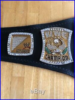 Wwe Adult Championship Replica Spinner Belt CM Punk